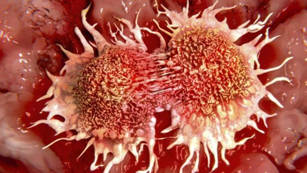 Cancer vaccine with 97% success rate